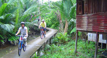 Cycle Tour Bangkok Jungle Thumbnail Picture
