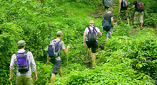 Trekking at Sanpatong Area : 2 Days / 1 Night (Joining Tour) Thumbnail Picture